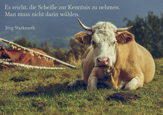 "Postkarte ""Scheiße"""